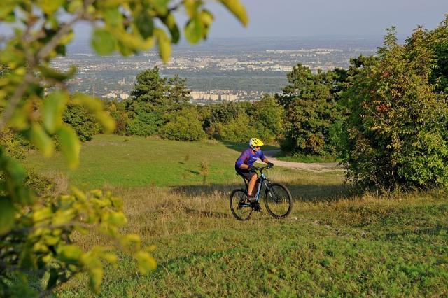 Hogyan válassz MTB kerékpárt?